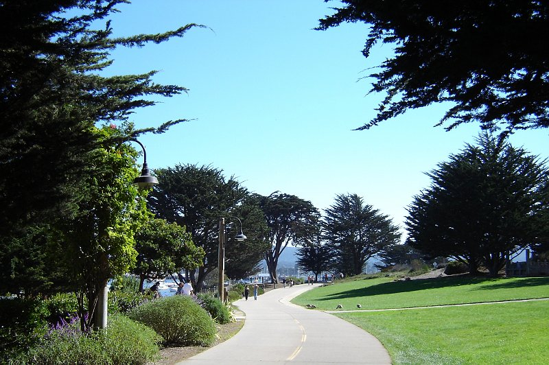Bike path at Monterey