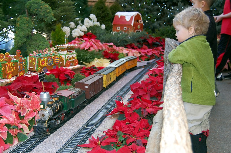 boy, model train and flowers