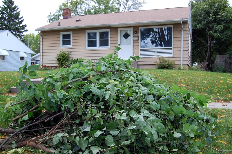 brush pile in front of house