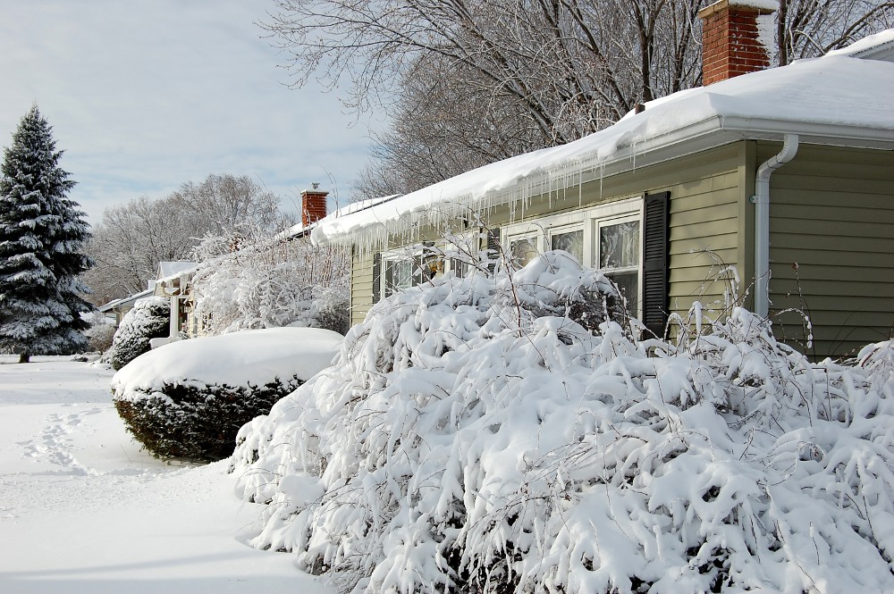 house with icicles and snow covered shrubs