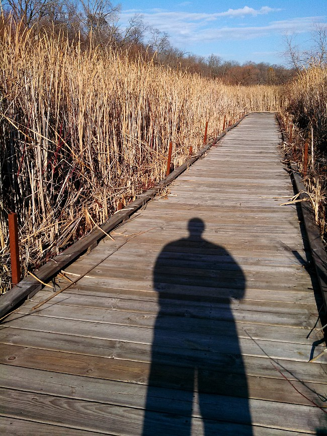 My shadow on the Edgewood boarwalk