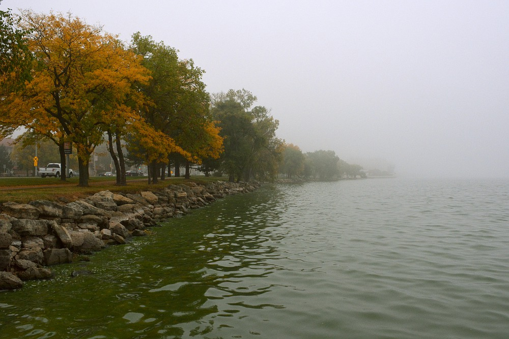 Lake Monona shore on a foggy autumn day