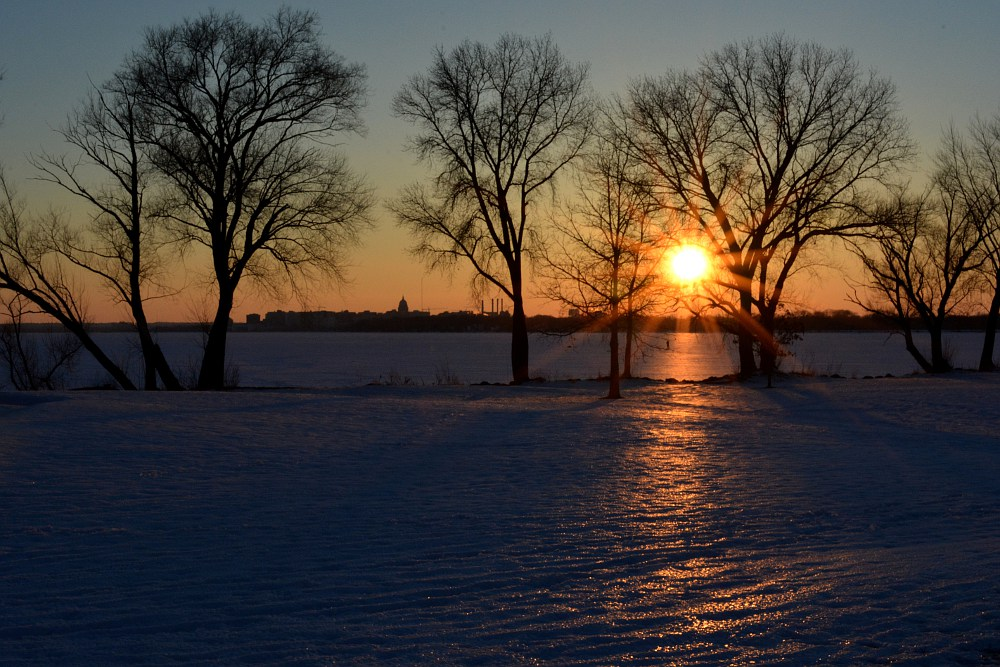 sun setting through trees along Lake Monona