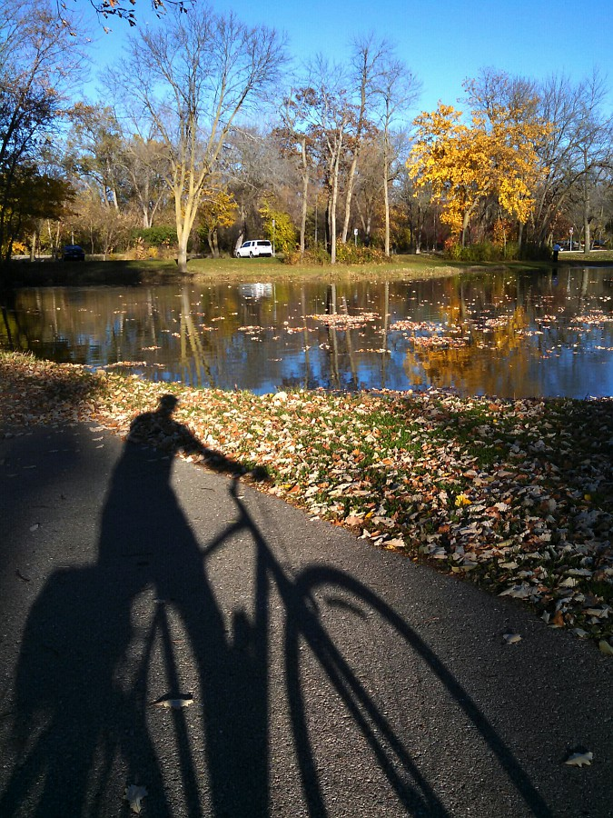 Bicycle shadow at an autumn lagoon