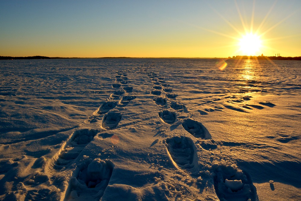 snowshoe tracks on a frozen Lake Monona