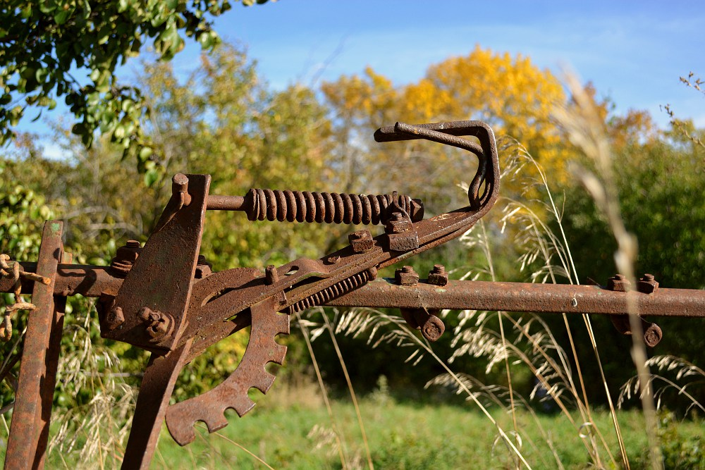 rusty farm rake in front of autumn trees