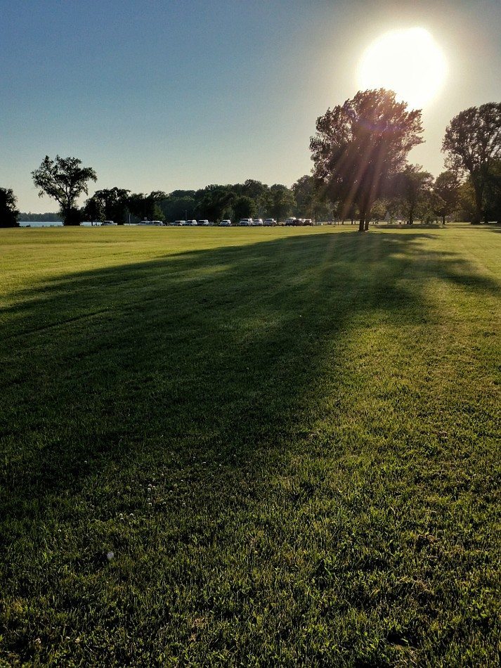Sun casting a long shadow of a tree on the grass