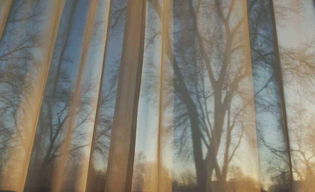 Late afternoon sun shining on a curtain, with tree silhouettes in the background