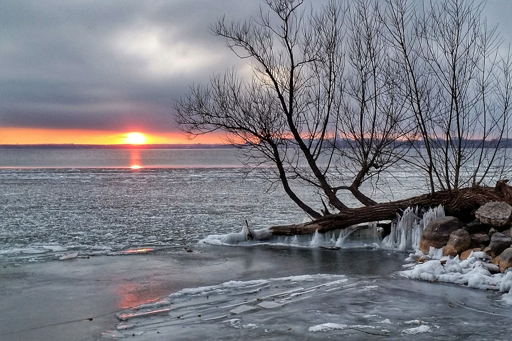 Ice forming on the shore of Lake Monona