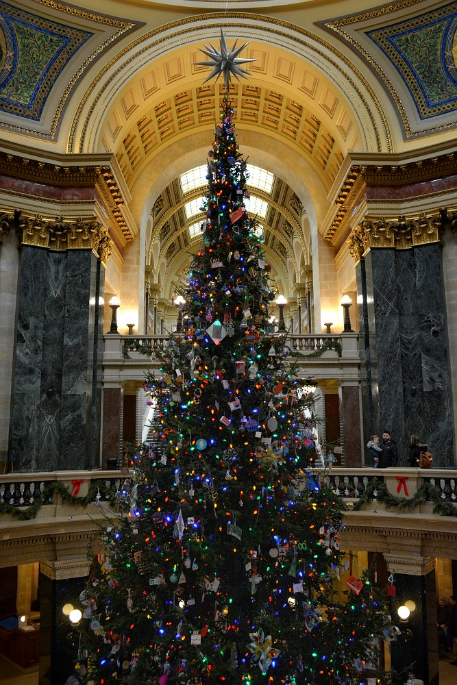 Christmas tree in the Capitol rotunda