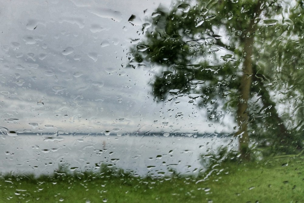 Lake shore and tree viewed through raindrops on a car window