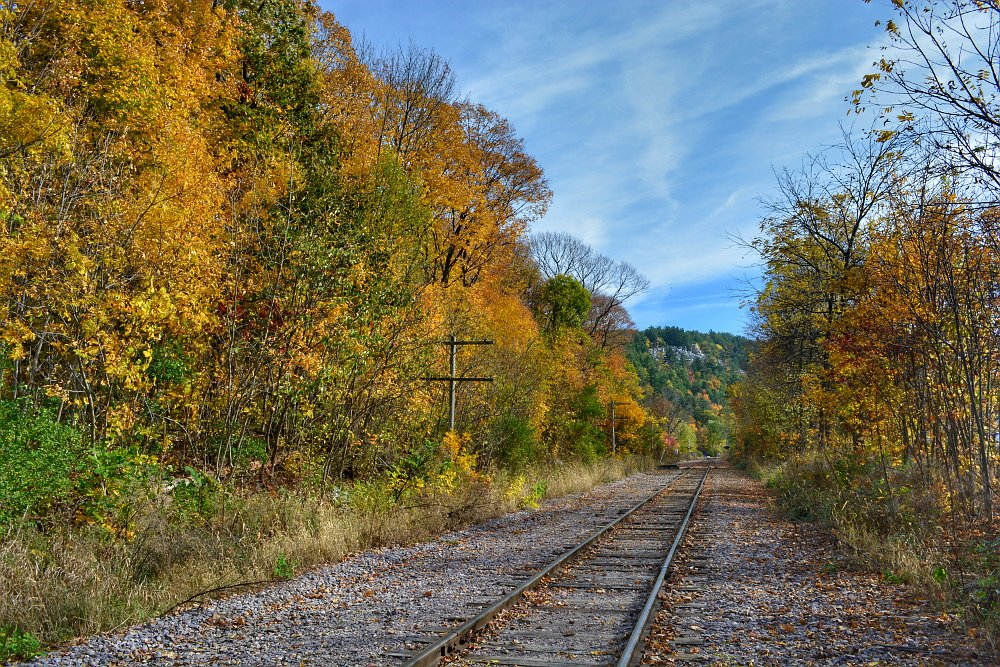 Railroad tracks cutting through a hillside of colorful trees