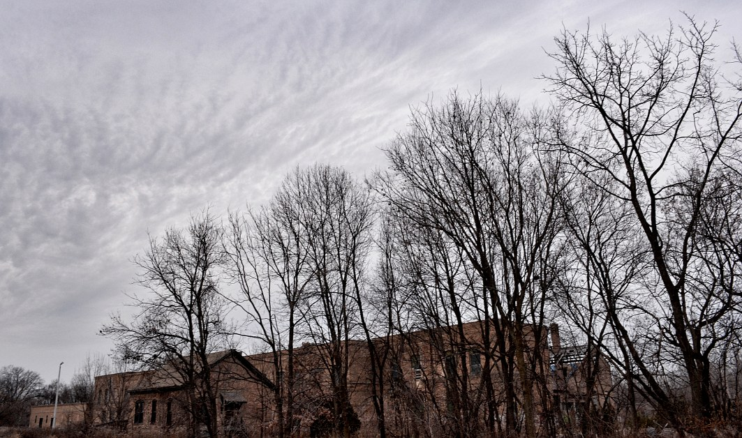 Old building behind a row of bare trees under a grey sky