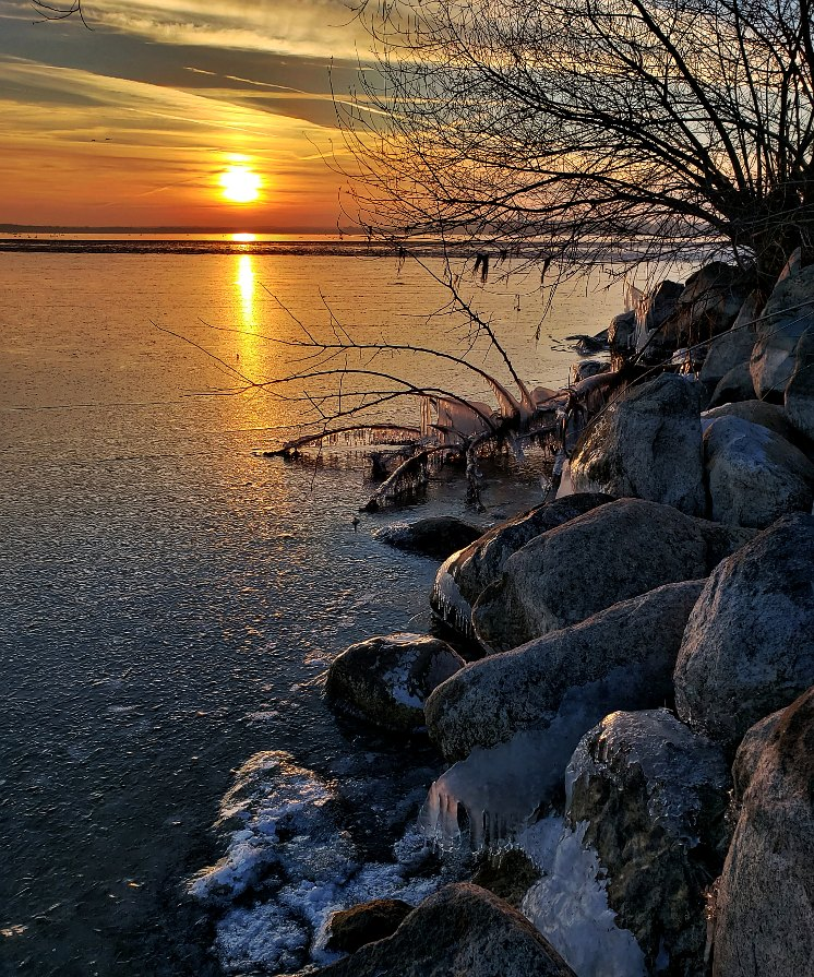 Sunset at the shore of a lake with ice covered rocks and a tree in silhouette.