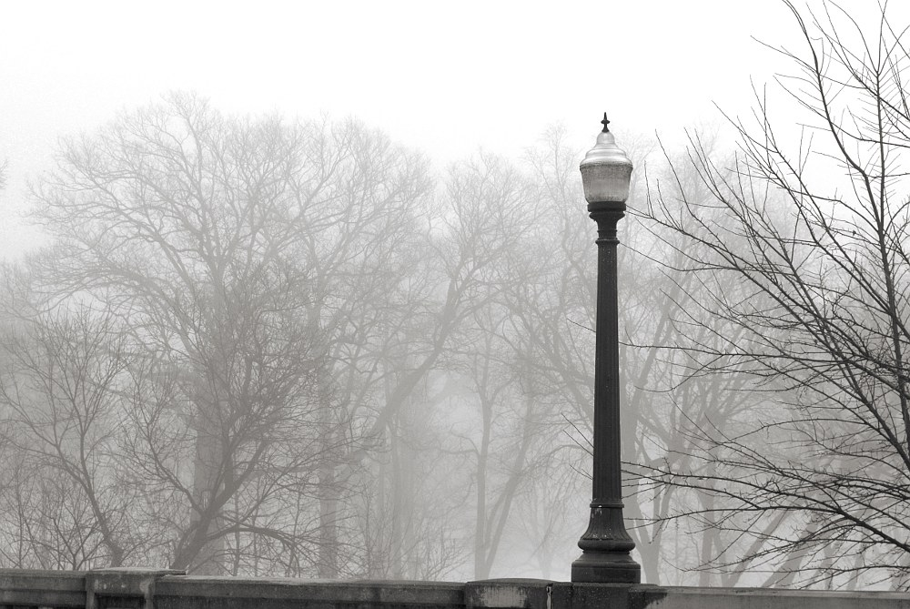 Lamppost on top of a cement railing with a background of trees shrouded by fog