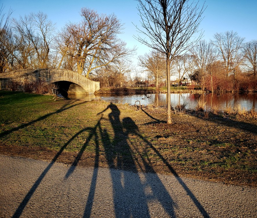 Shadow of bicycle and rider in front of a pond with a bridge