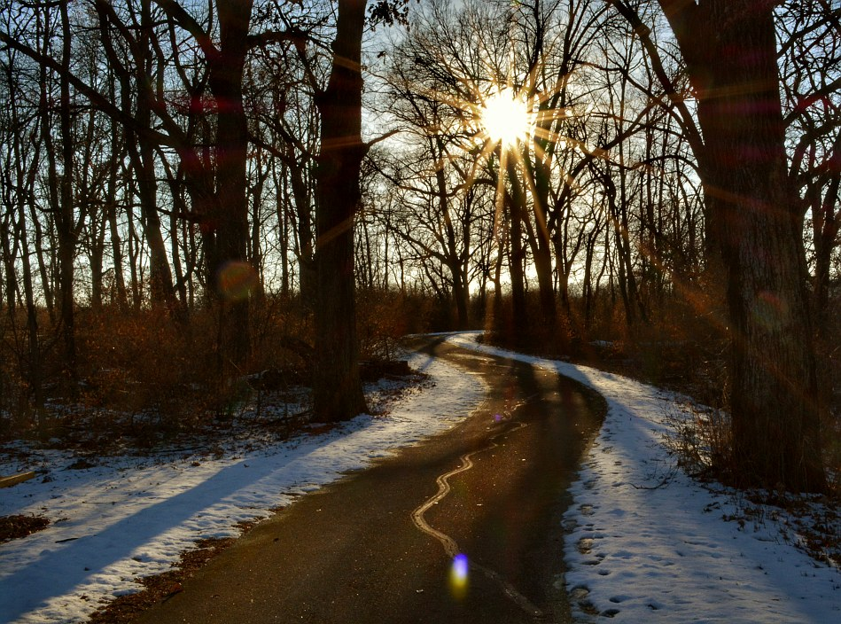 Late day sun, shining on a lightly snow covered path through the woods
