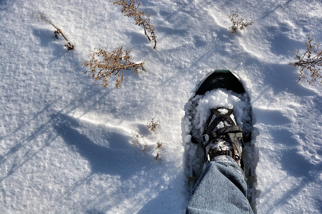 Foot with snowshoe stepping onto the snow