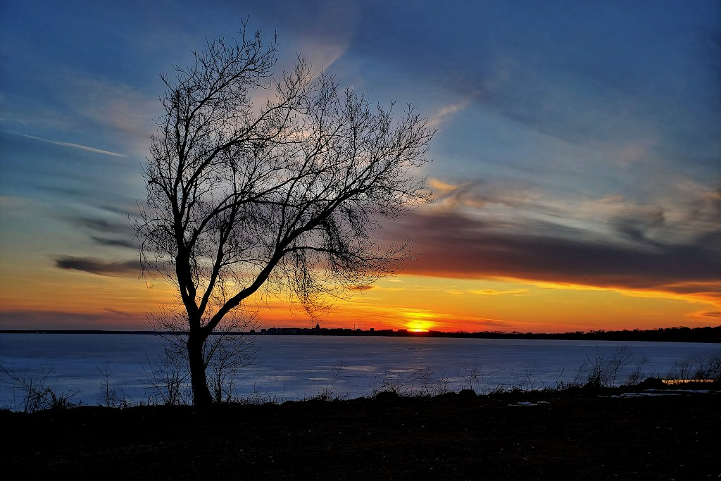 Sunset over a frozen lake with a tree silhouette in the foreground